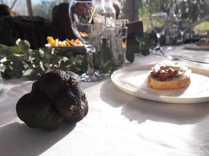 We found this truffle. Then we ate that bread.