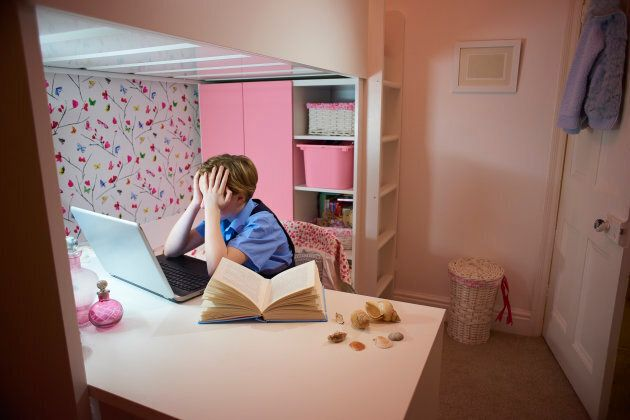 Reports of Cyberbullying and cyberstalking increased significantly from 20 percent to 33 percent and...