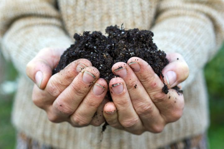 Composting makes nature's perfect soil.