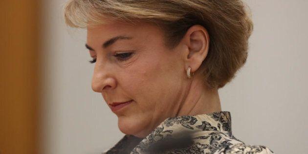 Employment minister Senator Michaelia Cash: