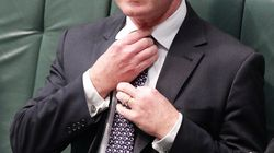 Pyne Claims Coalition Has Won The