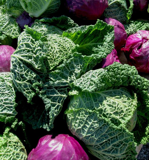 Cabbage is an excellent source of vitamin C and