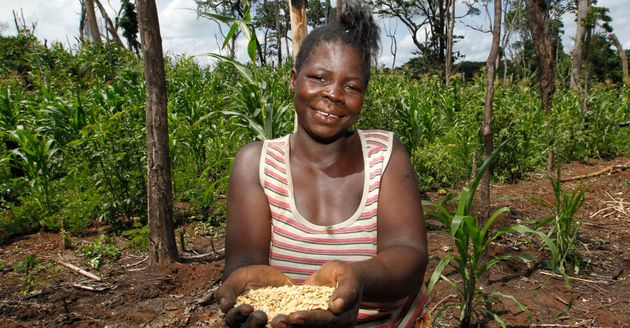 Pascaline is one of 80 women who have rebuilt their lives through an agricultural project in the Democratic...