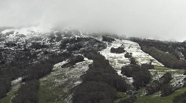 This was Thredbo at about 10 am on Thursday. It snowed all the way down to the village overnight but is quickly melting.