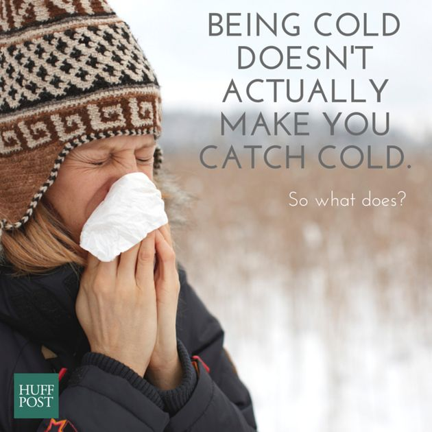 For The Last Time, Being Cold Doesn't Make You Catch