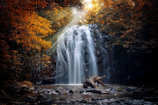 Yep. This place really exsists. Ellinjaa Falls at Millaa Millaa, Atherton