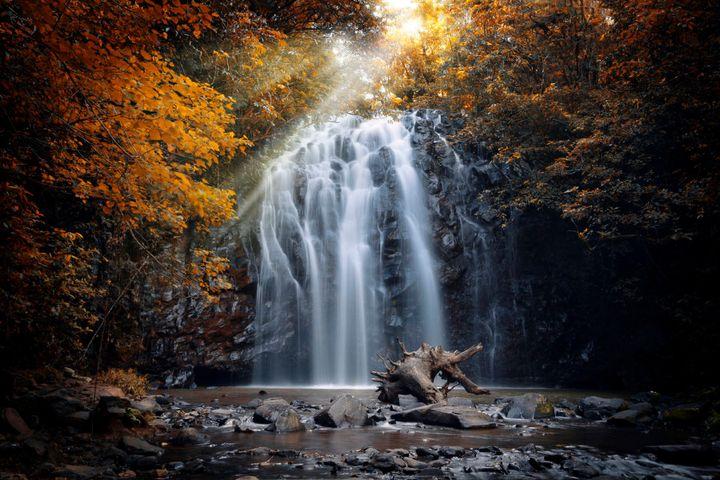 Yep. This place really exsists. Ellinjaa Falls at Millaa Millaa, Atherton Tablelands.