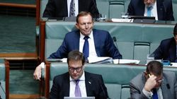 Tony Abbott Claims A 40 Percent 'No' SSM Vote Would Be A 'Moral