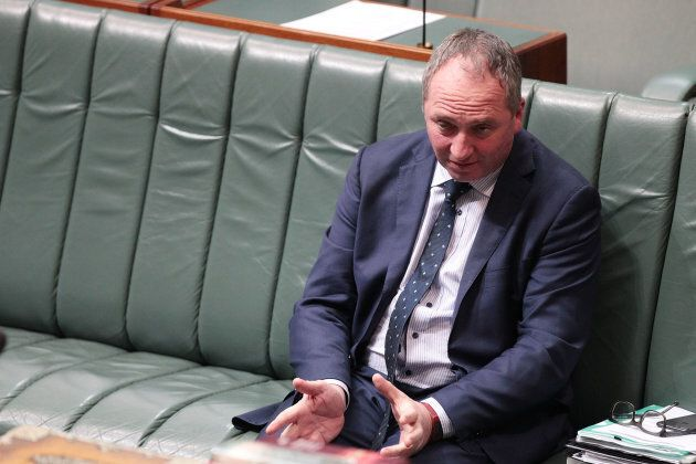 Ex-Deputy PM Barnaby Joyce was found to have dual citizenship with New Zealand.