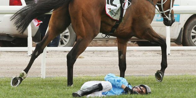 Regal Monarch Dies After Horror Melbourne Cup Day Fall At