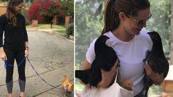 Jennifer Garner Has A Pet Chicken Named After A 'Mean Girls' Character She Walks On A
