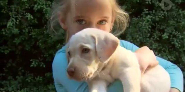 Sasha the Labrador puppy and Maia Hood have been
