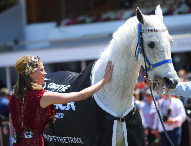 Channel 7 racing expert Francesca Cumani knows a champ when she sees one.