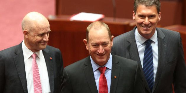 Fraser Anning got 19 primary votes at the 2016 federal election.