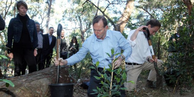 Then Prime Minister Tony Abbott launches the Green Army initiative in August