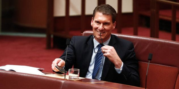Cory Bernardi just caused mayhem for the government and the new senate