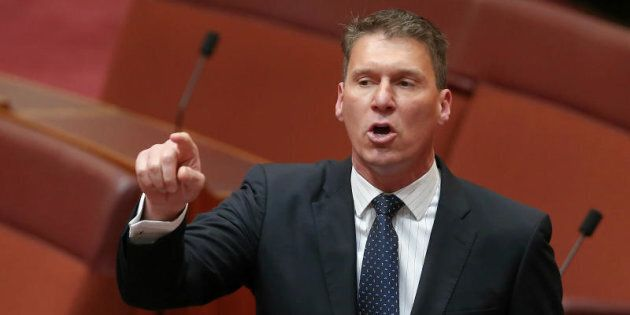 Senator Cory Bernardi says the only thing the climate review is going to do is cause