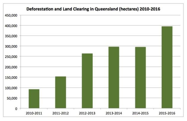 Queensland Bulldozes A Gabba's Worth Of Native Bushland Every Three Minutes, And It Could Get Worse After...