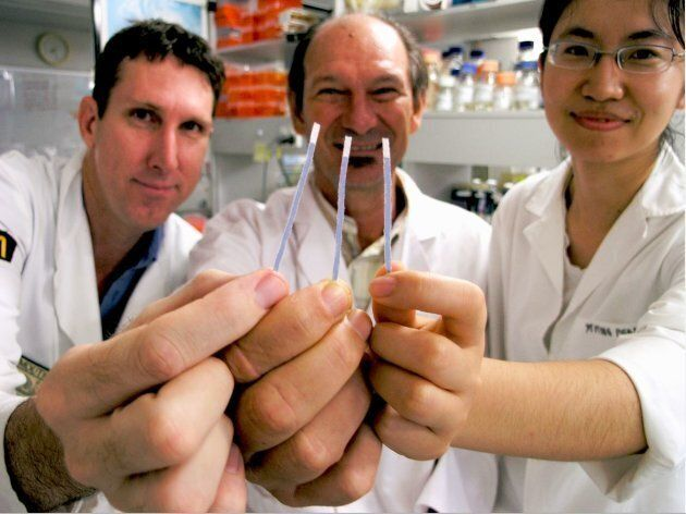 University of Queensland researchers Dr Michael Mason, Professor Jimmy Botella and Yiping Zhou were shocked to discover that you can extract DNA using dipsticks made of paper towel.