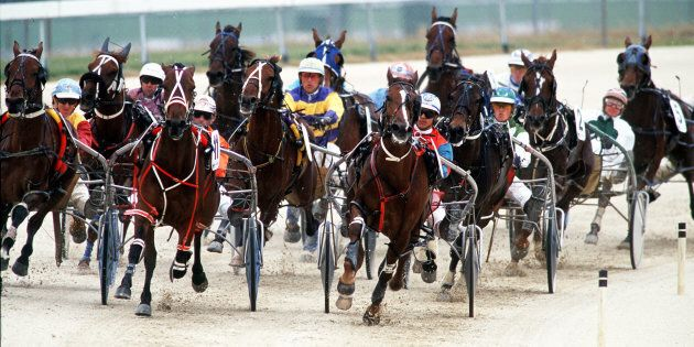 Aussie Harness Racing To Ban Whips In
