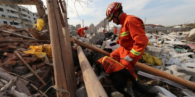 A rescue worker works with a rescue dog at the site of a blast in Ningbo, Zhejiang province,
