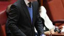 Labor senator Sam Dastyari Allegedly Tipped Off Chinese Donor :