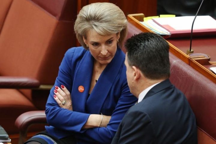 Michaelia Cash and Nick Xenophon during debate on the ABCC bill