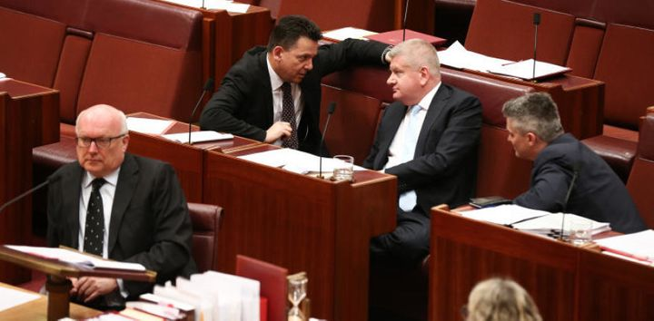 Nick Xenophon during debate on the ABCC Bill in the Senate