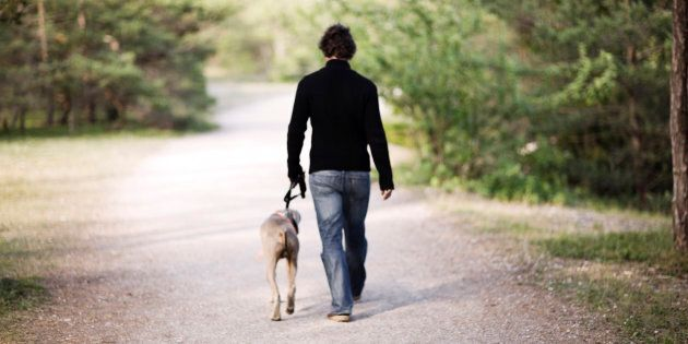 Pets are an important source of emotional support for many people with serious mental illness, a new study finds.