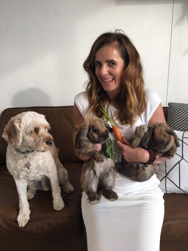 Lisa Messenger lets her pets roam around the office as a way to make the work space feel more like home,...