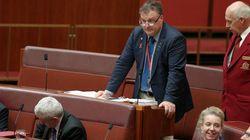 Pauline Hanson Farewells A 'Pain In Her