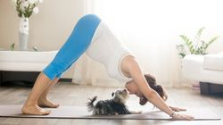 10 Yoga Poses For Better Digestion (And Less