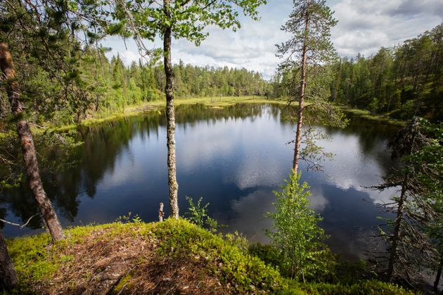 Oulanka National Park in norther Finland, where lakes and trees are