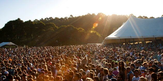 Falls Festival at Marion Bay has been marred by reports of sexual