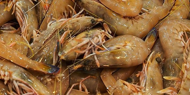 Imports of green prawns into Australia have been suspended amid an outbreak of white spot disease in