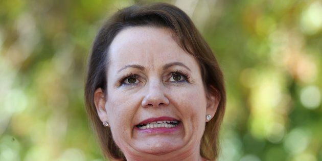 Sussan Ley has stood aside pending