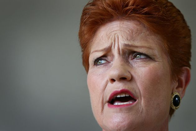 Senator Pauline Hanson's One Nation has a new member in Queensland MP Steve