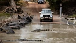 Man Killed By Crocodile At Notorious NT Road