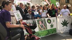 'Enough Is Enough': Desperate Carers Demand Medicinal Cannabis Become A Higher