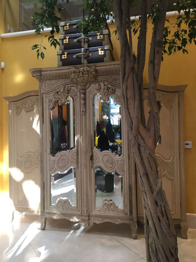 The armoire dressing room and Benjamina tree
