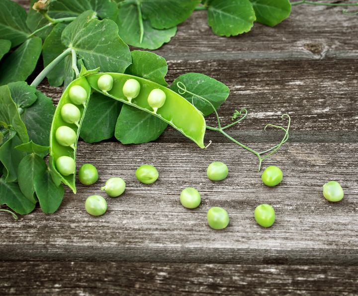 You better believe it, peas are legumes.