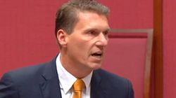 If Cory Bernardi Is Concerned About A Lack Of Conservative Government Voices, Why Did He Take One