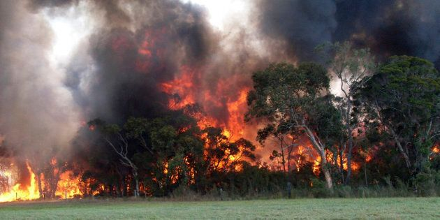 A bushfire has razed most of the small NSW town of Uarbry.