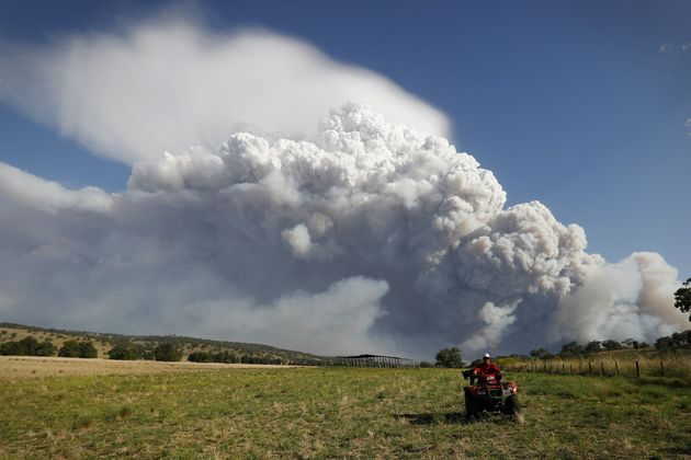 Cattle and sheep farmer Craig Schneider relocating his stock at his property near Coolah, NSW, as smoke...