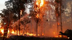 Bushfire Tally: At Least 30 Homes Lost In NSW