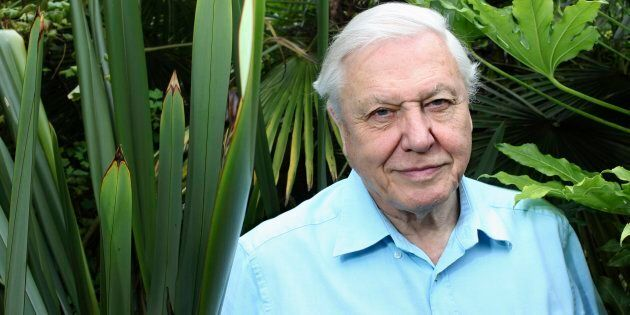 David Attenborough listens like he has all the time in the