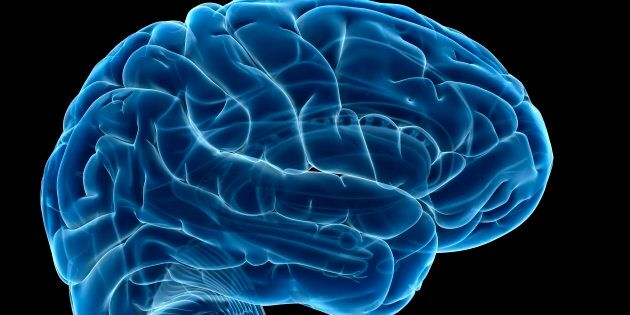 Researchers have identified the best apps for improving your brain.