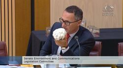 The Greens Leader Held Up Bleached Coral In Estimates Because That's What Happens