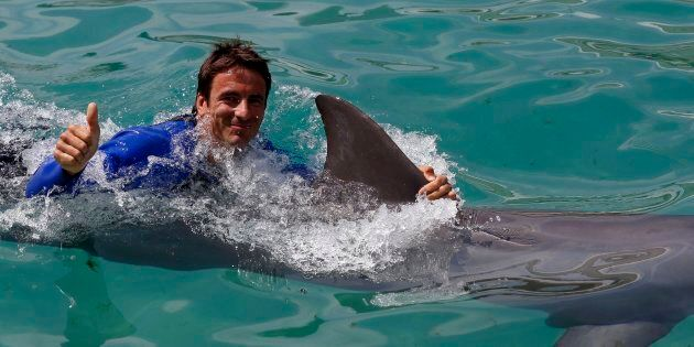 Dolphins can swim by themselves. They don't need me to swim with