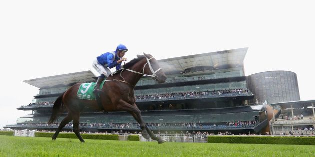 Winx has made it 16 consecutive wins at Rosehill on Saturday